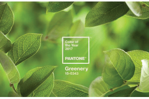 "It's Only Natural: ""Greenery"" is Pantone's 2017 Color of the Year"