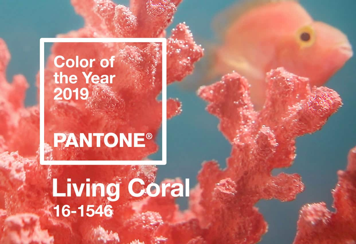 "Nourishment from Nature: ""Living Coral"" is Pantone's 2019 Color of the Year"