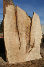 WoodSlabTables