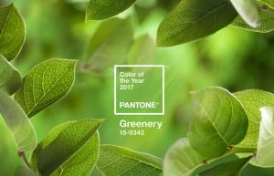 pantone-coy2017-heroshot2-rgb-1024x662